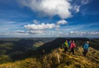 ألمانيا تسجل 3.3% نمواً في عدد السياح خلال يونيو الماضي